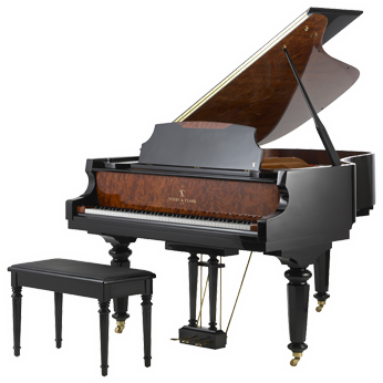 how to become a professional piano player